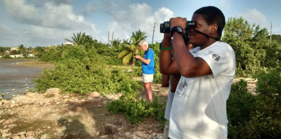 Anguilla National Trust Members took part in the 2016 Caribbean Waterbird Census to celebrate World Wetlands Day